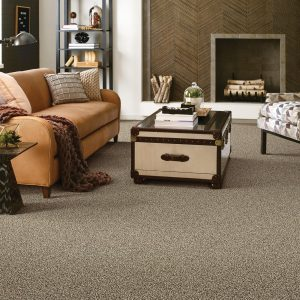 Living room carpet | McCool's Flooring